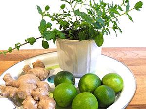 Die Zutaten für den Limetten-Minze Sirup mit Ingwer