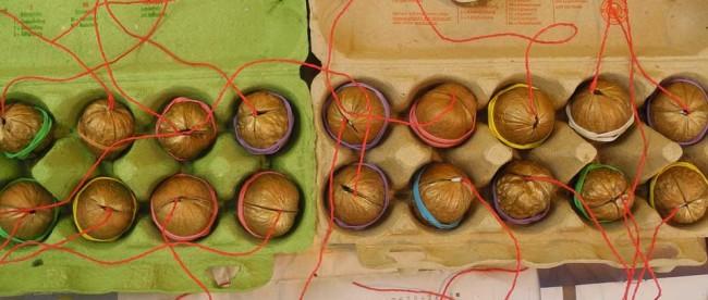 Die zusammengeklebten Nüsse